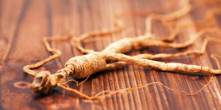 Phytothérapie : 5 plantes alliées des neurones