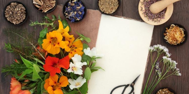 15 remèdes de grands-mères pour soigner les bobos du quotidien