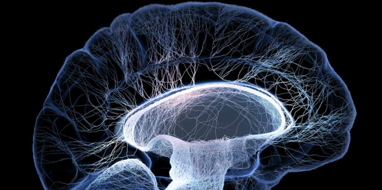 30 neurones contre la douleur