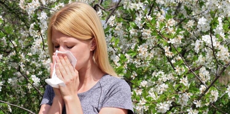 30 % des adultes souffriraient d'allergie au pollen