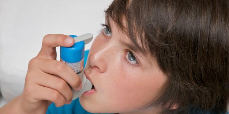 Allergies : une chambre d'exposition aux allergènes à Strasbourg