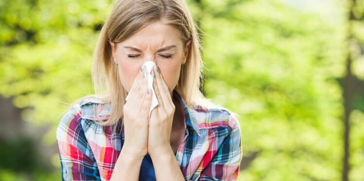 Allergies : les pollens sont de retour ce week-end !