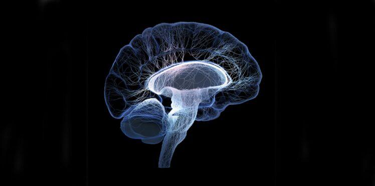 Alzheimer : une maladie transmissible ?