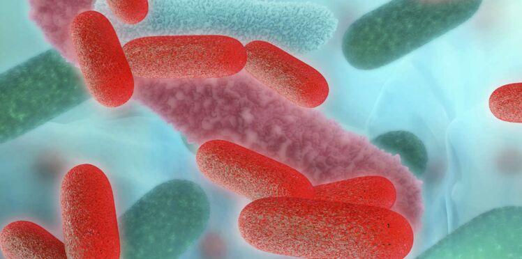 Antibiotiques : une piste pour les remplacer ?