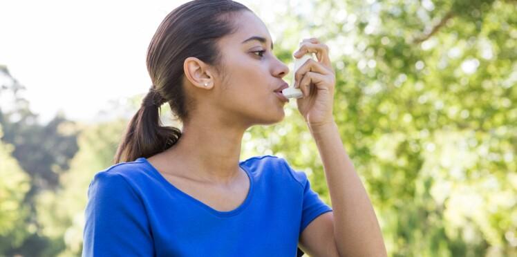 Asthme : Une plante asiatique pourrait-elle bientôt remplacer la Ventoline ?
