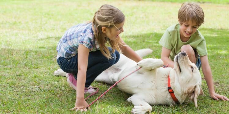 Avoir un chien réduirait l'eczéma et l'asthme de l'enfant