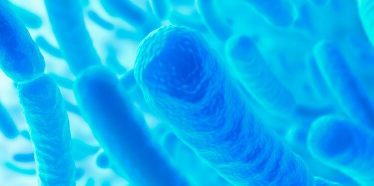 Des bactéries plus vieilles que nous dans nos intestins ?