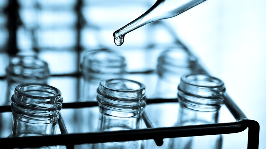 Cancer : comment le palbociclib réduirait la croissance tumorale