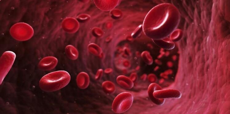 Cardiologie : un stent encore plus performant