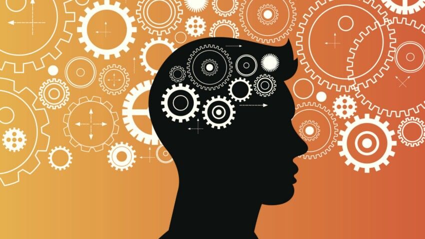 Cerveau : on soutient le Neurodon