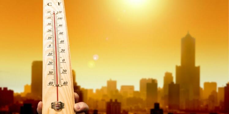 Quelles maladies vont se répandre et s'aggraver à cause du changement climatique ?