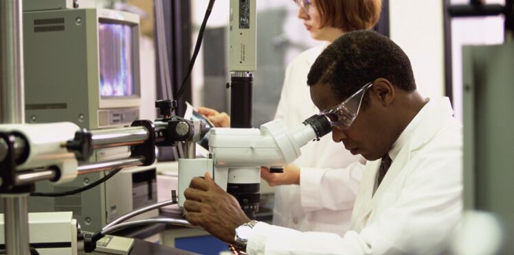 Des chercheurs mettent au point le plus petit organisme vivant