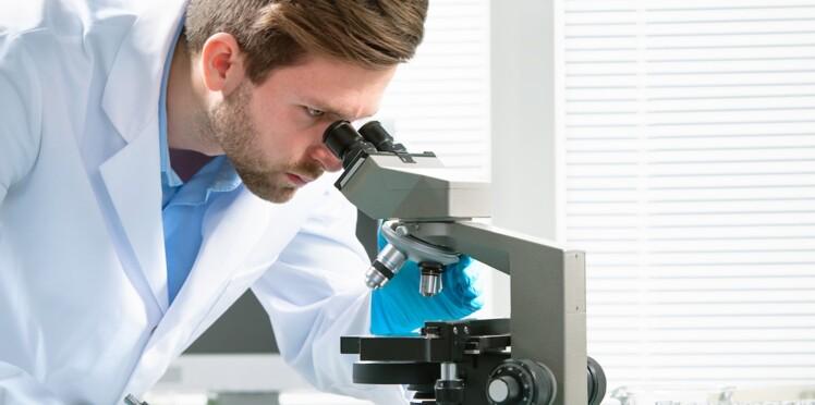 Etats-Unis : des chercheurs recréent une partie de l'estomac en laboratoire