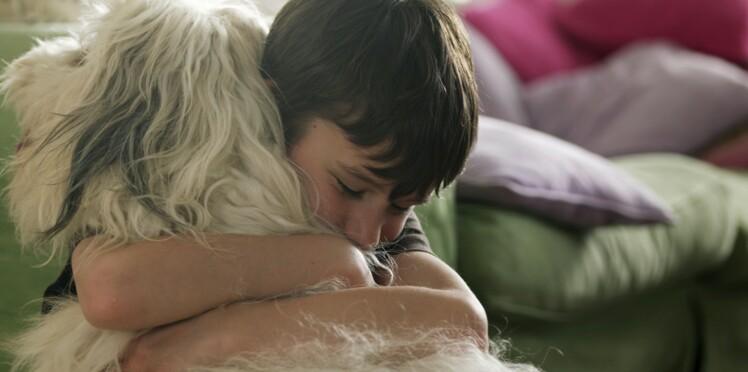 Le chien : meilleur ami de l'homme, ennemi de l'asthme et de l'eczéma ?