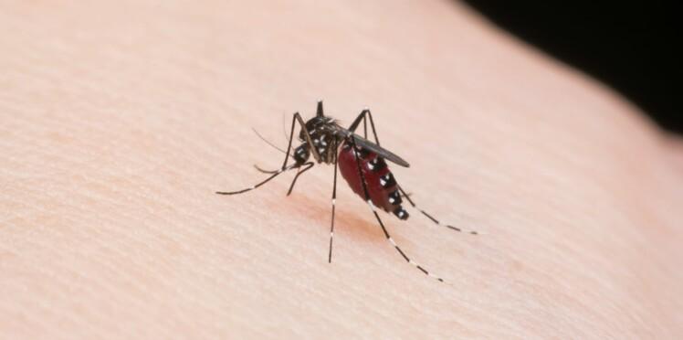 Chikungunya : 30 départements français pourraient bientôt être touchés par l'épidémie