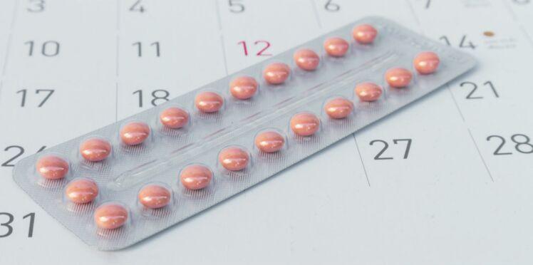 Contraception : une pilule à base de plantes et sans hormones pourrait voir le jour