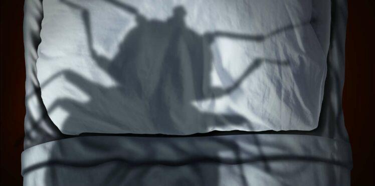 Découvrez en deux minutes chrono si vous avez des punaises de lit chez vous !