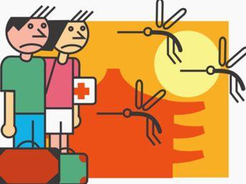 Epidémie de dengue : les précautions à prendre