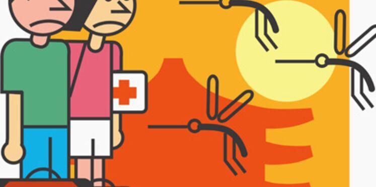 Dengue : un premier cas en métropole