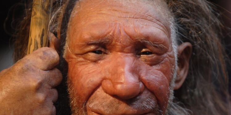 Génétique : l'homme de Néandertal et la femme moderne, pas compatibles