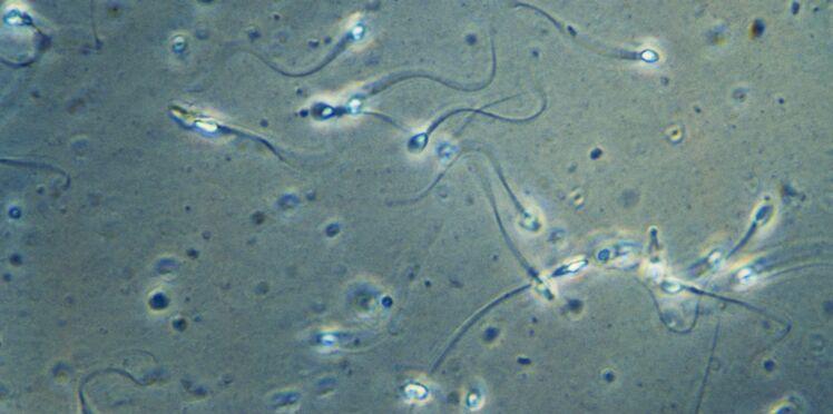 Infertilité : la fin des banques de sperme ?