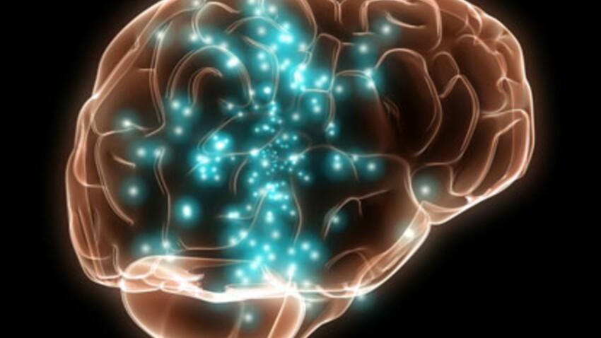 Journée mondiale de la maladie d'Alzheimer : le programme