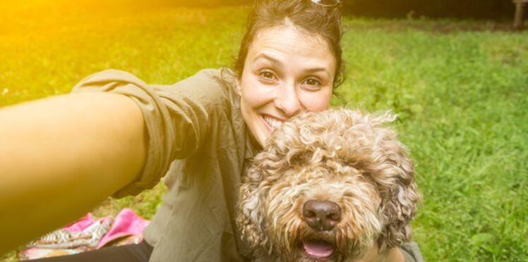La cynothérapie: les chiens aussi peuvent soigner les maux