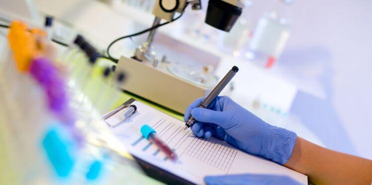 Les OGM, inoffensifs pour la santé et l'environnement?