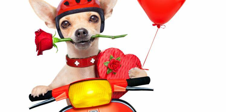 Pour lutter contre le cancer, les motards distribuent des roses