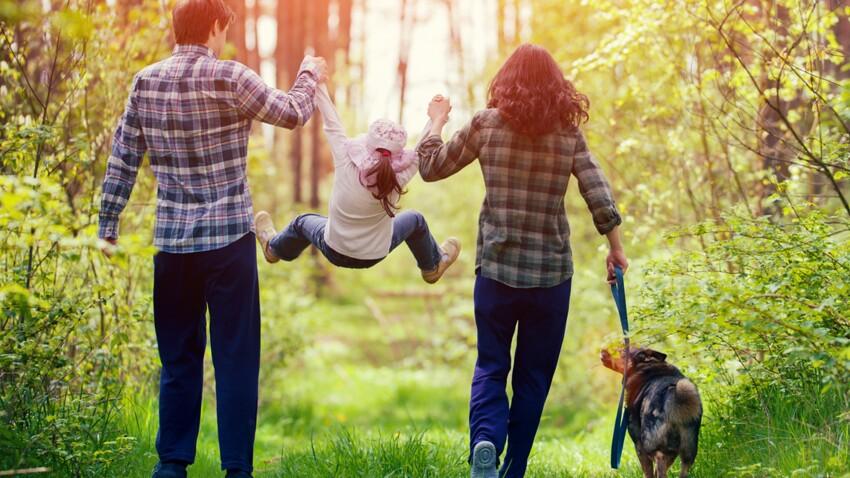 Maladie de Lyme : 70 malades s'apprêtent à déposer une plainte