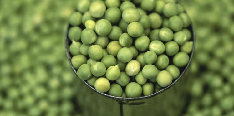 Alimentation : et si les conserves nous aidaient à manger équilibré ?