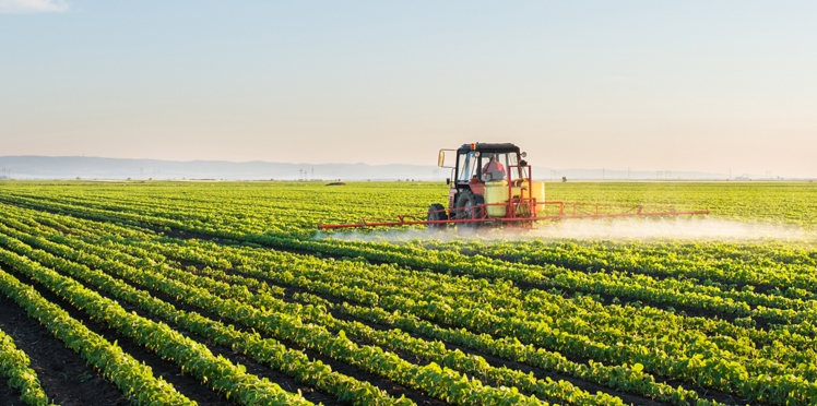 Monsanto, le géant des pesticides, tente de décrédibiliser la science