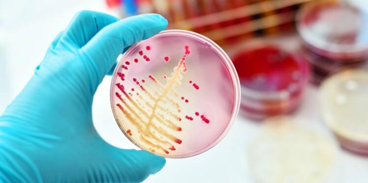 Un nouvel antibiotique ultra-efficace pour lutter contre les bactéries les plus résistantes