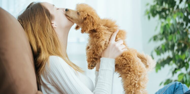 L'odorat de l'Homme serait aussi développé que celui du chien