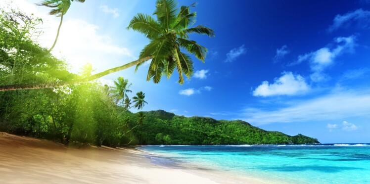 Peste: des écoles fermées aux Seychelles par crainte d'une épidémie