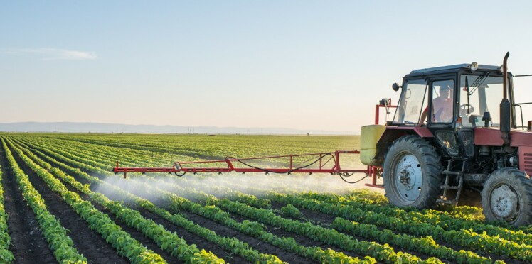 Pesticides : des agriculteurs dans le flou quant aux risques encourus
