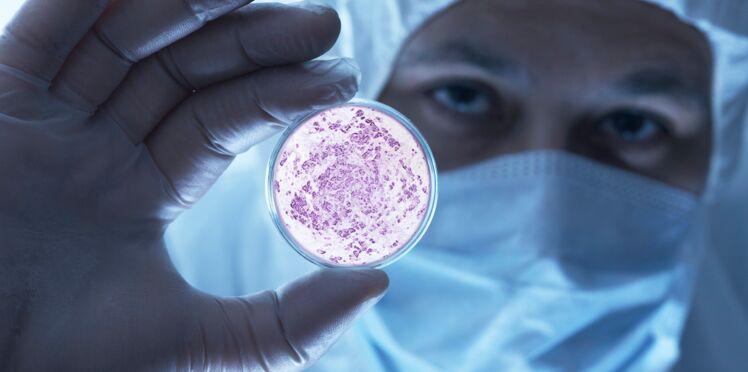 Des virus mangeurs de bactéries pour lutter contre les infections