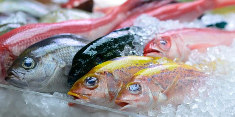 Japon : un établissement vend par erreur un poisson potentiellement mortel