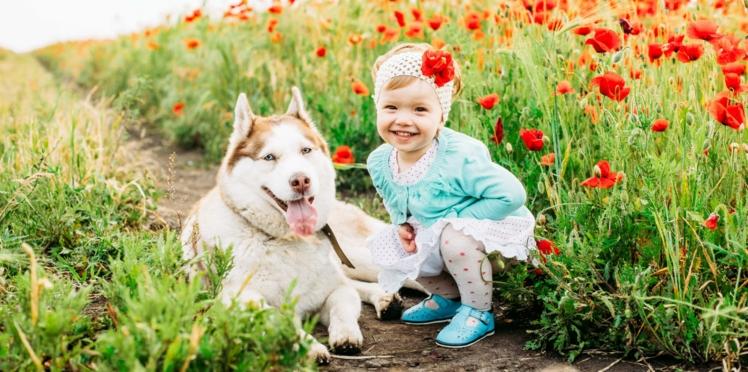 Stress: les chiens apaisent plus les enfants que la compagnie de leurs parents