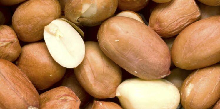 Une bactérie pour lutter contre l'allergie aux cacahuètes…