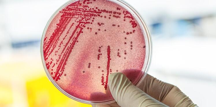 L'Humanité n'est pas à l'abri d'une résistance aux antibiotiques