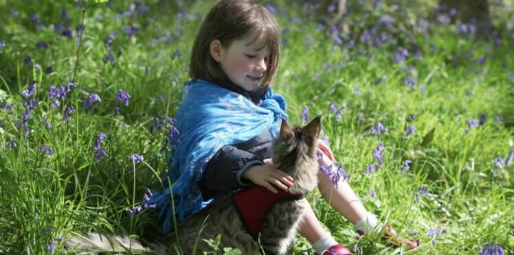 (VIDEO) Une petite fille autiste ne communique qu'avec son chat