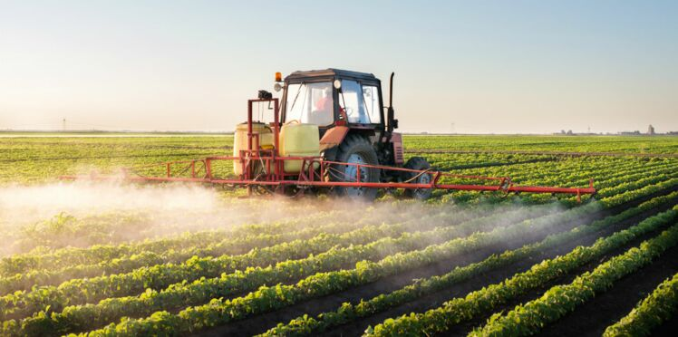 Les victimes des pesticides recensées sur une carte de France