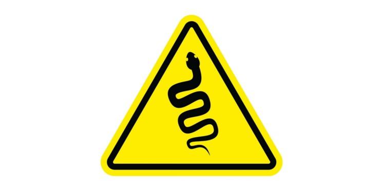 Vipères : évitez les morsures, l'antidote est actuellement en pénurie