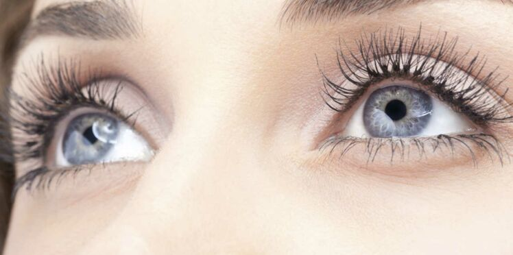 Les cellules souches pour retrouver la vue ?
