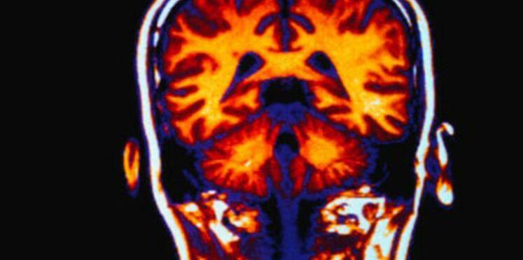 Neurodon : Testez vos neurones pour la bonne cause