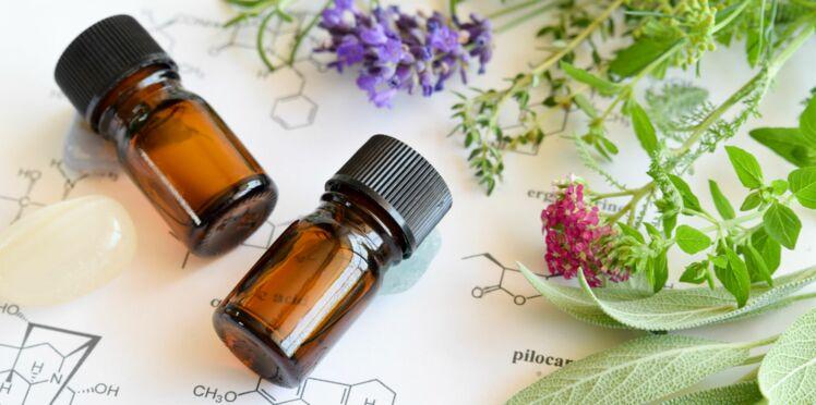 L'aromathérapie pour traiter les infections urinaires