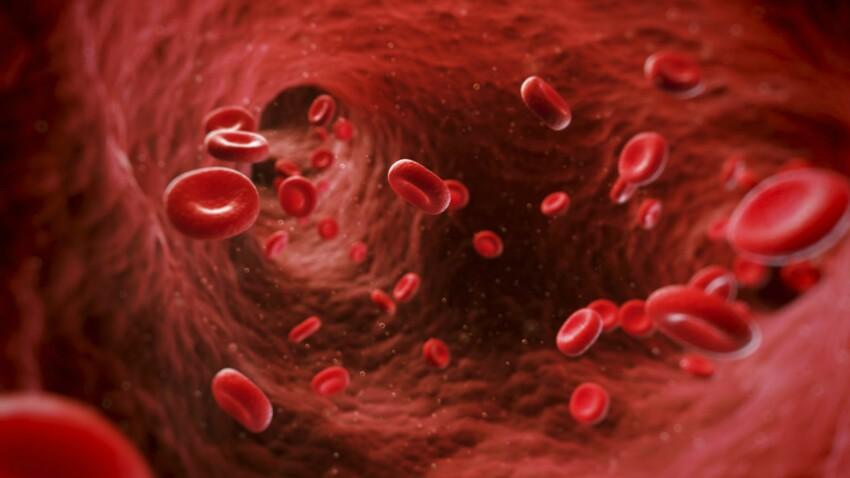 Anémie : causes, symptômes et traitements