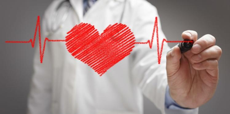 15 infos insolites à connaître sur le cœur