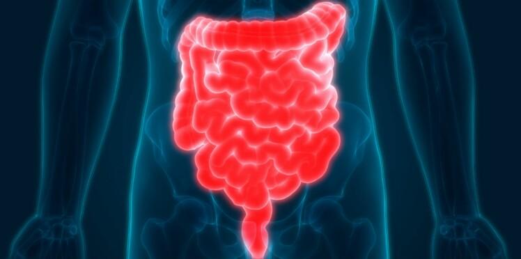 Intestins : comment chouchouter votre deuxième cerveau